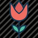 aquatic flower, blossom, flower, lotus bud icon