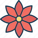 blooming, decorative, floral, flower icon