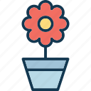 flower, flower pot, nature, plant pot icon