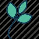 blossom, floral, flower decor, rose icon