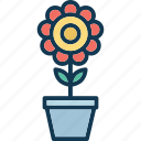 ecology, flower, flower pot, nature icon