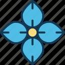 amaryllis flower, clematis, daisy, flower icon