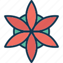 aster, aster flower, blossom, calendula icon