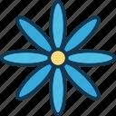 blossom, flower, gerbera, gerbera daisy icon
