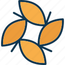 flower, four leaves, leaf, leaf flower icon