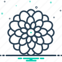 blossom, chrysanthemum, colrful, dahlia, decoration, flower, natural