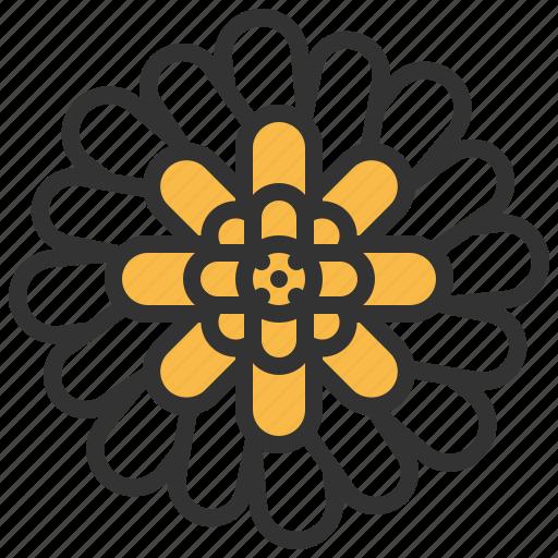 bloom, floral, flower, gerbera, plant icon