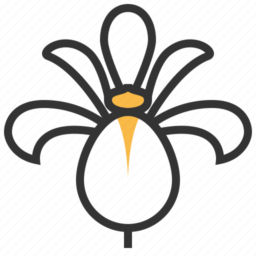 ecology, flower, iris, nature, plant, spring icon