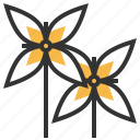 floral, flower, ixora, nature, plant icon