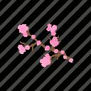 blossom, branch, cartoon, flower, nature, pink, spring
