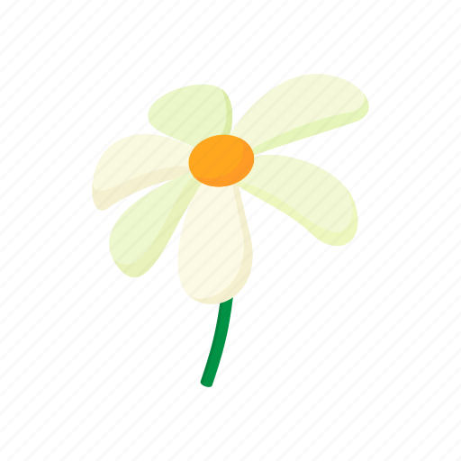 cartoon, chamomile, floral, flower, nature, plant, spring icon