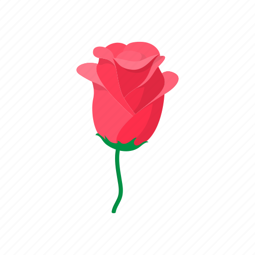 cartoon, floral, flower, nature, plant, rose, spring icon