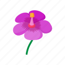 cartoon, floral, flower, nature, plant, spring, violet icon