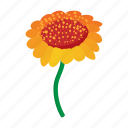cartoon, floral, flower, nature, orange, plant, spring icon