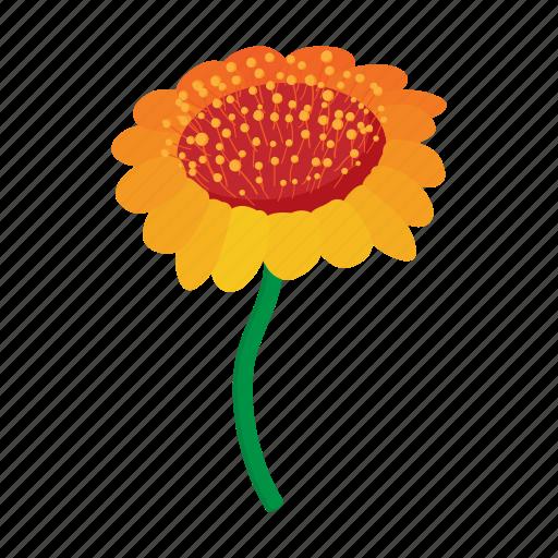 cartoon, floral, flower, nature, orange, plant, spring icon