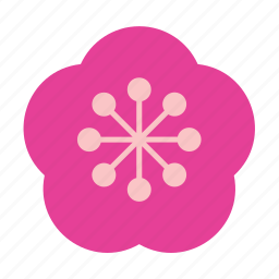 bloom, blooming, floral, flower, lotus, nature, plant icon