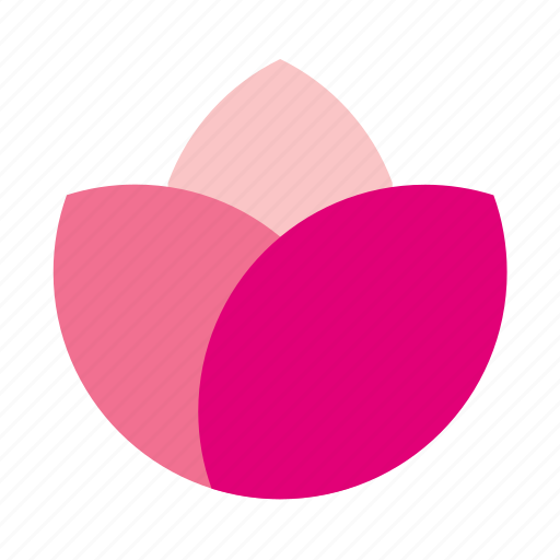bloom, blooming, floral, flower, nature, plant, rose icon