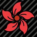 flora, floral, flower, nature, periwinkle, shape