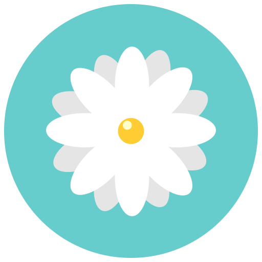 Aroma, blossom, chamomile, daisy, flower, flowers, nature icon - Free download