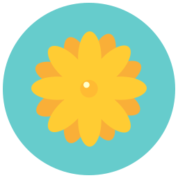 aroma, blossom, daisy, flower, flowers, nature icon