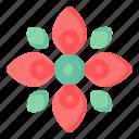 flower, flora, blossom, red kousa, kousa flower flora, kousa flower