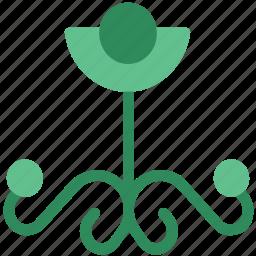 bloom, blooming, floral, floral design, flower, nature, rose bloom, slightly opened design icon