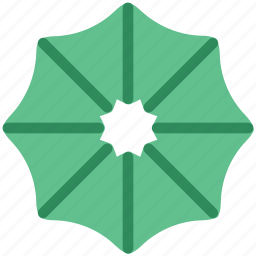 blooming, daisy, ecology, nature, umbrella flower icon