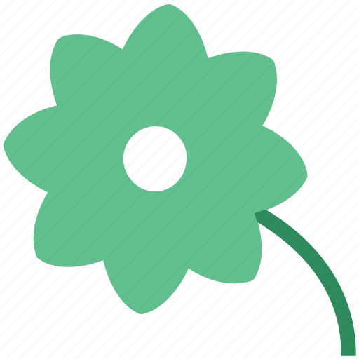 blossoming, floral, flower, petals, sagittaria graminea, spring, three icon