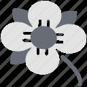 flower bud, garden, natural, peace flower, petals flower, yard
