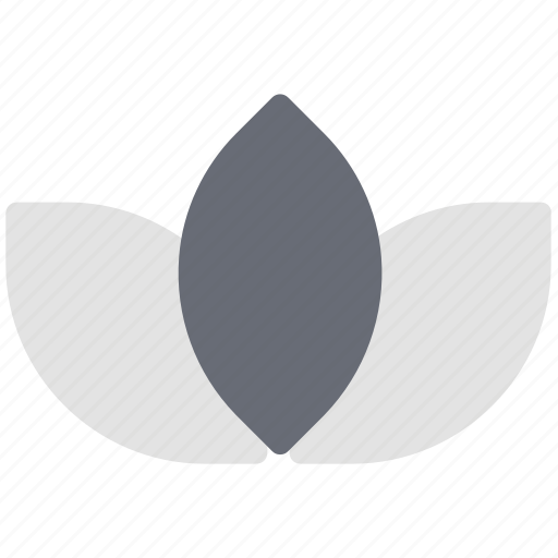 aquatic flower, blossom, flower, lotus bud, lotus bud open, petals icon