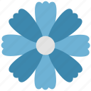 bloom, blooming, decorative flower, ecology, floral, flower, nature icon