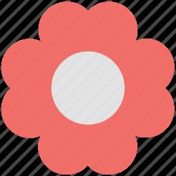 daisy, floral, flower petals, garden daisy, petals icon
