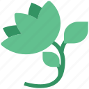blooming, blooming flower, ecology, floral, rose, rose with leaves