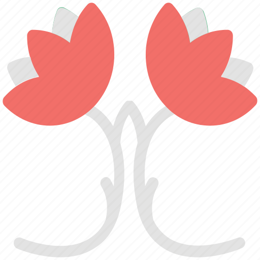 blooming, bouquet, branches, flower petals, flowers, rose branch, two roses icon