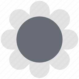 blossom, flower, petals, seed flower, sunflower icon