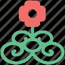 buds flower, curls leaves, floral, floral design, rose with pattern, seeds floral, seeds pattern icon