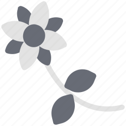 beauty, flora, flower, nature, periwinkle, periwinkle flower, spring icon
