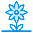 flower, garden, green, nature, park, plant, spring icon