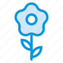 beauty, flower, garden, nature, park, plant, spring icon