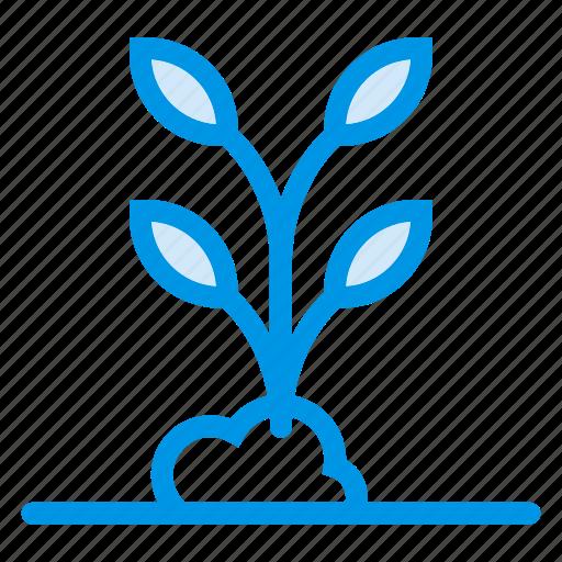 branch, flower, forest, garden, nature, plant, tree icon