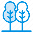 forest, leaf, nature, park, plant, summer, tree icon