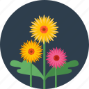 flower, flowers, garden, green, plant, tree icon