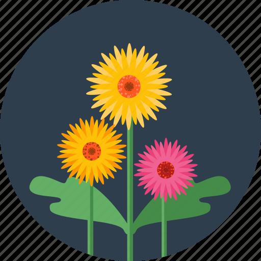 flower, flowers, garden, green, plant, tree icon