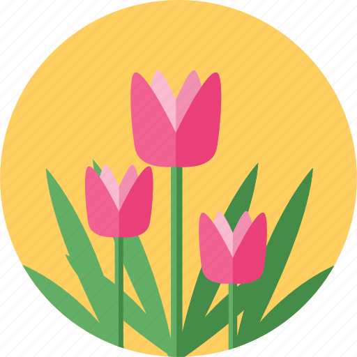 beauty, bloom, blossom, flower, flowers, plant, spring icon