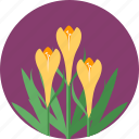 bloom, ecology, flowers, garden, gardening, green icon
