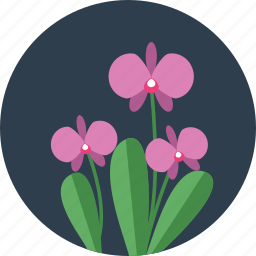 ecology, floral, flower, flowers, garden, spring, tree icon