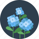 eco, floral, flower, flowers, garden, leaf, spring icon