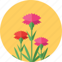 bloom, blossom, floral, flowers, garden, spring icon