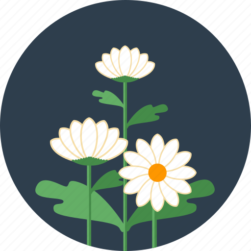 blossom, floral, flowers, garden, leaf, spring icon