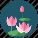 flowers, eco, ecology, flower, garden, plant
